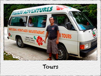 Link to Land Tours